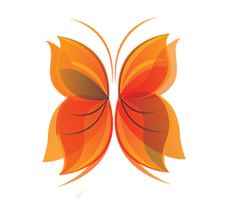 Papillon orange.png