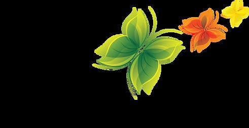 Les 3 papillons (vert, orange et jaune)du Logo de Sources Vives