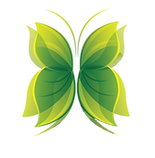 Papillon vert du logo de Sources Vives