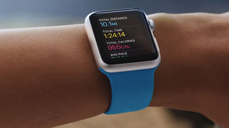 Fitness Band Market To Shrink Amid Apple Watch Effect
