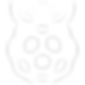 devicons_1-8-0_raspberry_pi_256_0_ffffff