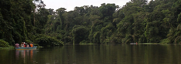 Tour throughout the Canals of Tortuguero National Park in Costa Rica