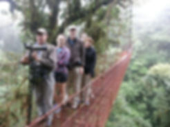 Guided tour at Monteverde Hanging Bridges