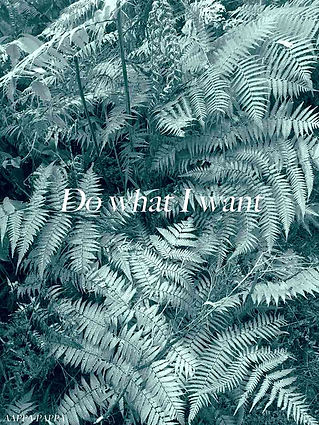 Do-what-I-want-by-AAPPA-PAPPA-2019.WEB.j