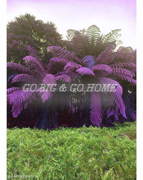 GO-BIG-AND-GO-HOME-by-AAPPA-PAPPA-2019.W