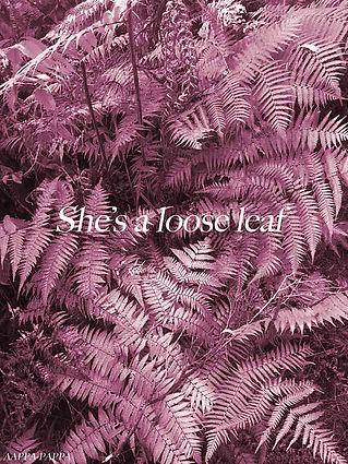 Loose-leaf-by-AAPPA-PAPPA-2019.WEB.jpg