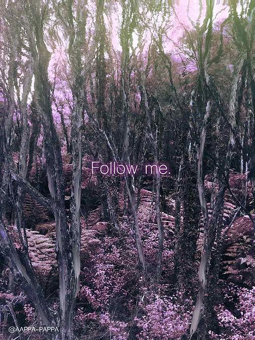 Follow-Me-by-AAPPA-PAPPA-2019.WEB.jpg