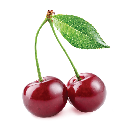 Cherry Size 9 10lbs