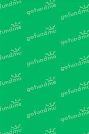 gofundmepattern_bright_opt.png