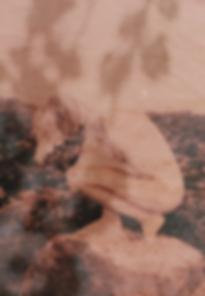 Screen Shot 2020-05-18 at 12.34.39.png