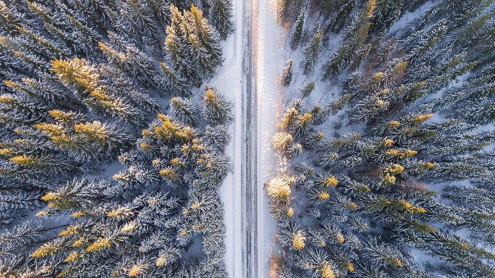 paysage hiver contre plongée sapins neige route enneigée