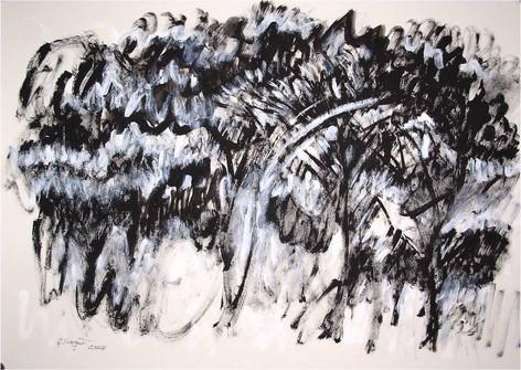 Alberi/Trees