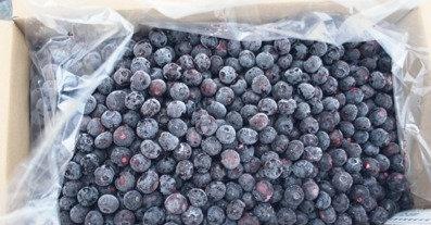 30lb Frozen Blueberries