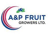 A&P Logo.jpg