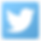 Logo Twitter Piratas Soto Basket