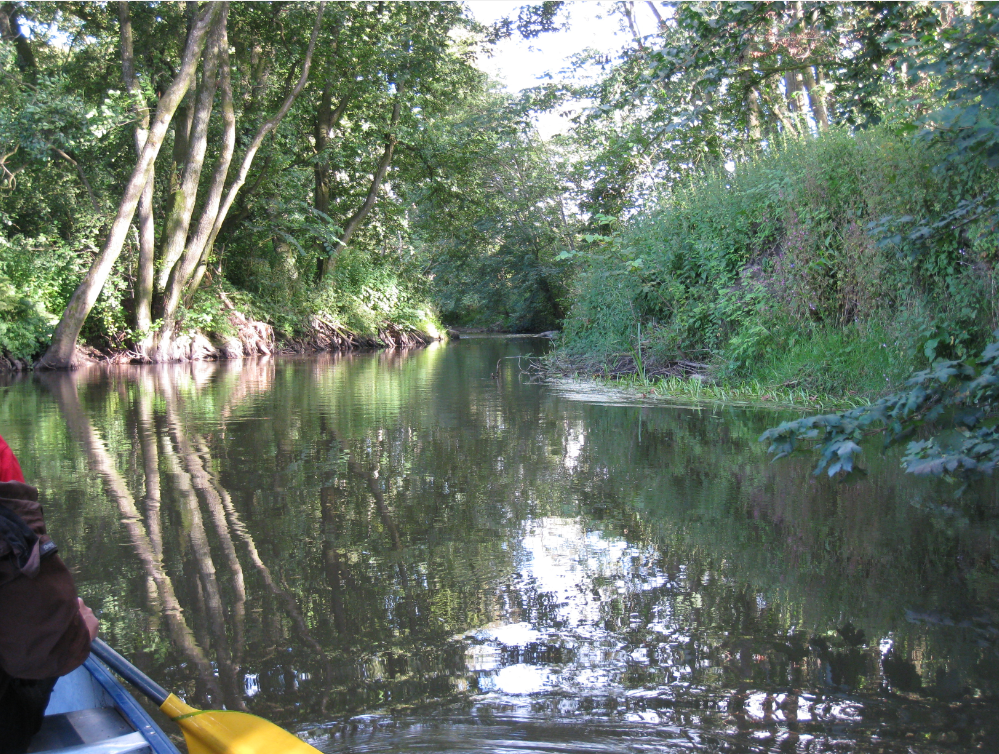 Ta på en flot kanotur