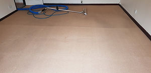 Carpet cleaning, Yeadon Emsley's carpet cleaning
