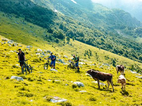 Wegschonend Mountainbiken