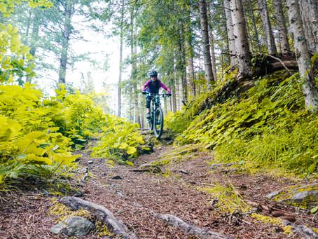 Richtig bremsen beim Mountainbiken