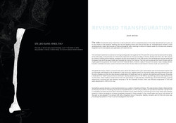 Draft Book_Sarah deVries_compressed for website2