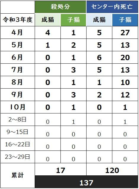 週報_1008.jpg