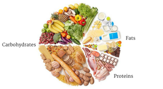 macronutrients carbs carbohydrates fats proteins food