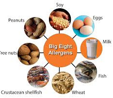big 8 allergens allergy peanuts tree nuts dairy fish shellfish milk eggs wheat soy
