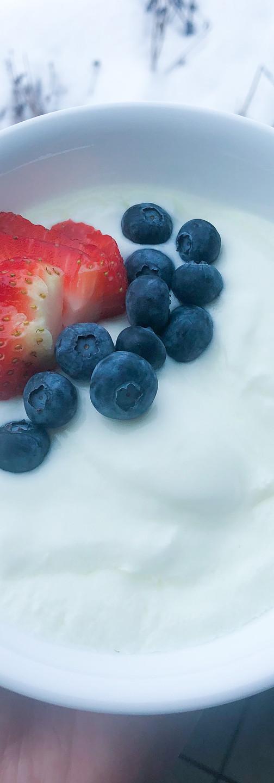 homemade yogurt instant pot fermentation berries