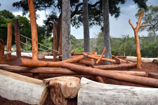 Annangrove Log Scramble