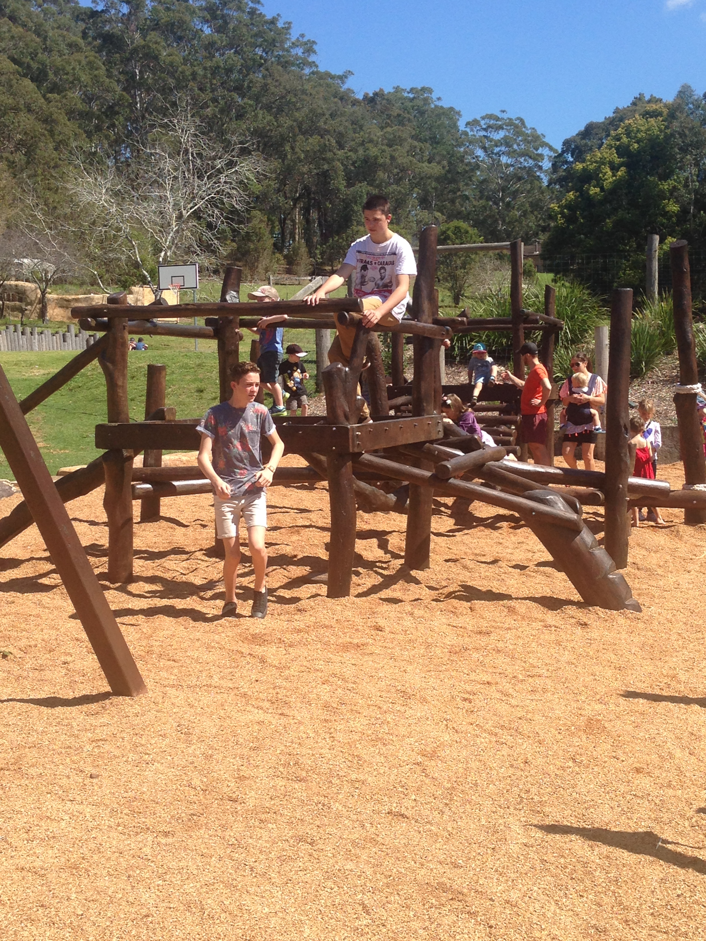 Children playing on the climber