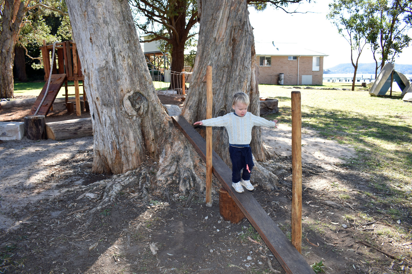 Sloped Tree Balance Beam