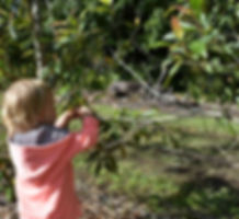 Child engaging in Nature Play