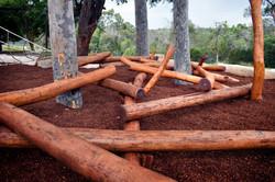 Log Scramble Close-up