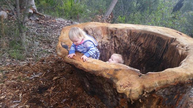Children enjoying natual play in a hollow stump