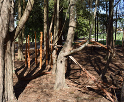 Self-Build Area Stilts.jpg