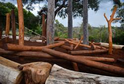 Log Scramble on Slope