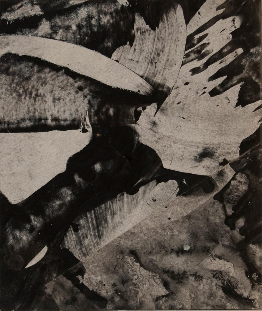 Black Snowflake, acrylic on panel,10x12,2016