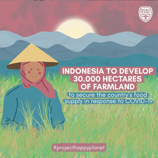 INDONESIA TO DEVELOP 30000 HECTARES OF FARMLAND