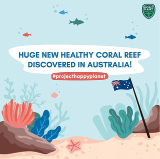 HUGE NEW HEALTHY CORAL REEF DISCOVERED IN AUSTRALIA!
