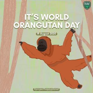 WORLD ORANGUTAN DAY