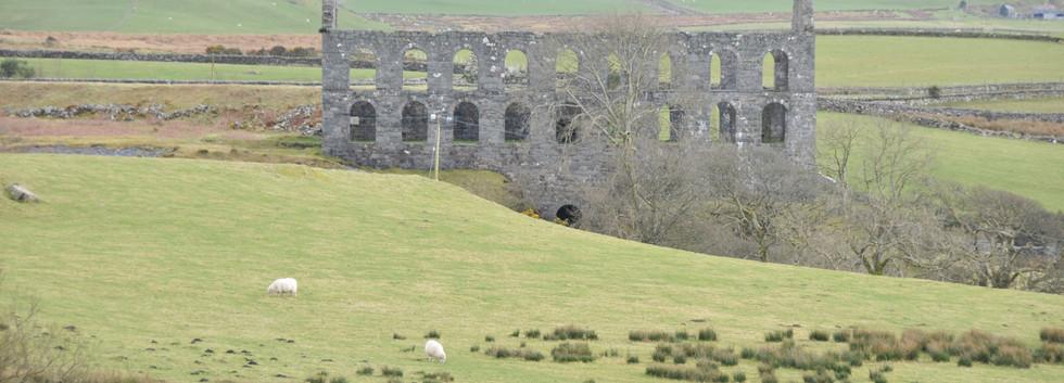Wales March 2009  157.jpg