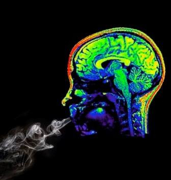 Marijuana on the Mind – A Primer for Policymakers