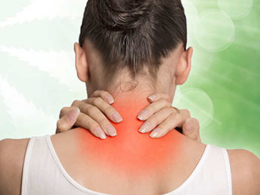 Study: Cannabis Associated with Sustained Improvements in Chronic Pain Patients