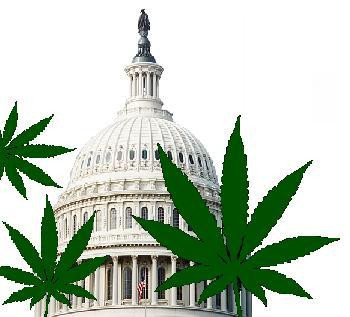 Is marijuana the holy grail of good health?