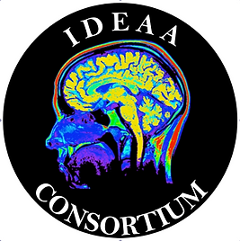 IDEAA Logo for Website.png