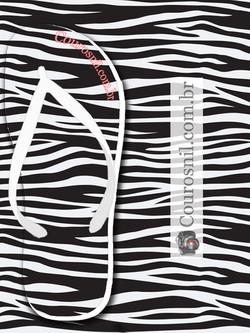 zebra vetor