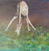Giraffe cropped.jpg