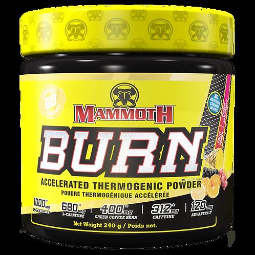Mammoth Burn