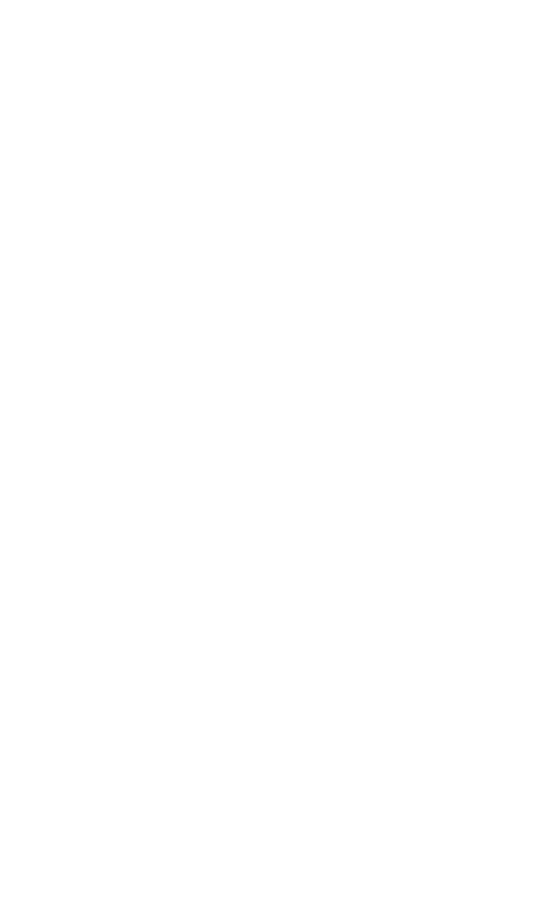 plante_04.png