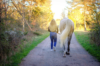 Hest som terapi